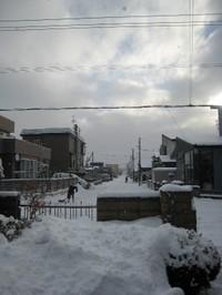 Yukinoasa