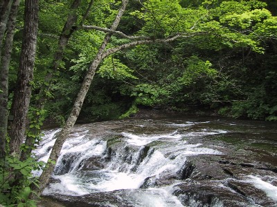 白扇の滝 1